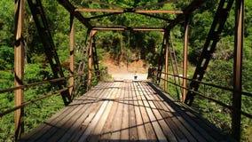A bridge in nature stock photo