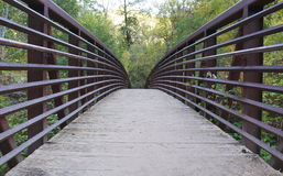 Bridge in Nature Royalty Free Stock Image