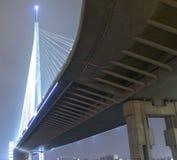 bridge neva night petersburg river russia saint Στοκ φωτογραφία με δικαίωμα ελεύθερης χρήσης