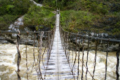 The bridge in New Guinea Stock Photography