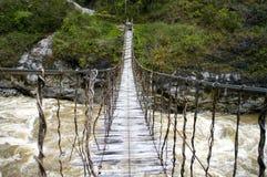 The bridge in New Guinea. The Rope bridge in New Guinea stock photography