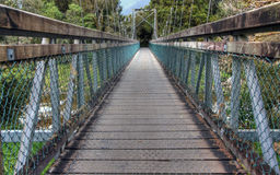 Bridge in a New Zealand rainforest Royalty Free Stock Photo