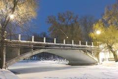 Bridge in a night city Stock Image