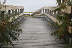 Bridge into ?. November 2015 Near Boston Massachusetts wooden bridge stands in the last renaming salt marsh near Boston Massassuttess Stock Images