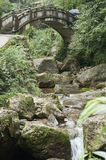 Bridge. Old stone arch bridge in forest Royalty Free Stock Photos