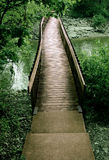 Bridge out of the woods Stock Image
