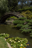 Bridge Over A Pond With Water Lilies Royalty Free Stock Photo