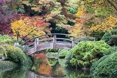 Bridge Over Autumn-tinged Waters Stock Photography