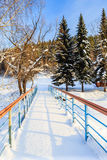 Bridge over Belokurikha river. Resort Belokurikha. Altai Stock Photography
