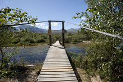 Bridge over clean and clear river in the forest, Rondane National Park Stock Images