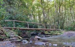 Bridge over Cove Creek Stock Photo