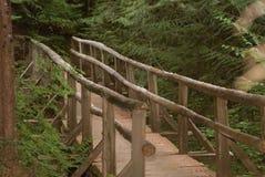 Bridge Over the Creek. Wooden bridge over the creek Stock Image