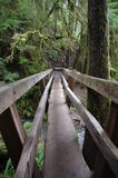 Bridge over a creek Stock Photography