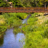 Bridge over a Creek Royalty Free Stock Images