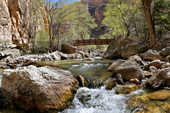 Bridge over the creek. A small foot-bridge spans shell creek in the bighorn mountains, wyoming stock photos
