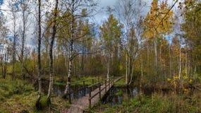 Bridge over the creek in autumn royalty free stock image