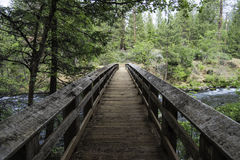 Bridge over creek. Bridge over a creek at Burney State Park in California Stock Photography