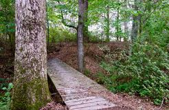 Bridge over a creek on a hiking trail. In a forest Stock Photos