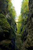 Bridge over a deep ravine Stock Images