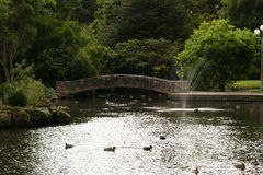 Bridge Over The Duck Pond,Invercargill Royalty Free Stock Photos