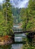 Bridge over the forest stream Stock Photos