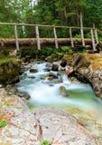 Bridge over forest stream Royalty Free Stock Photo