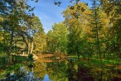 Bridge over garden lake in Vidago royalty free stock photos