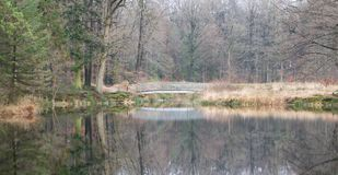 Bridge over a lake in the forest. The Netherlands Royalty Free Stock Image