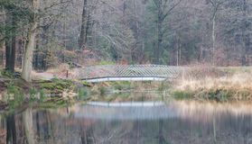 Bridge over a lake in the forest. The Netherlands Stock Images