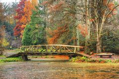Bridge over lake in forest stock photos