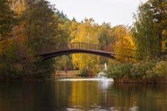 Bridge over the lake in Mezhyhirya Stock Image