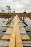 Bridge over lake. New wooden hiking bridge on hiking trail in marshland area Royalty Free Stock Photos