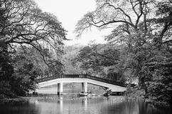 Bridge over lake Stock Image