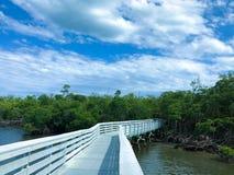 Bridge over the lake stock photos
