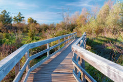 Bridge Over the Marsh Royalty Free Stock Photography