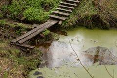 The bridge. The bridge over marsh creek Stock Images