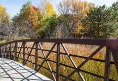 Bridge Over Marsh Grass Stock Images