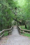 Bridge Over Mission River in Park. Wooden Bridge over Mission River in the woods at the Lions Club Park in Refugio Texas Royalty Free Stock Image