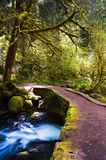 Bridge over Multnomah Falls head water. A small bridger crosses the headwaters of Multnomah Falls near Portland, Oregon Royalty Free Stock Photos