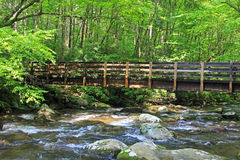 Bridge over Pigeon River Royalty Free Stock Photography