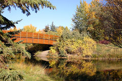 Bridge Over Pond Royalty Free Stock Photo