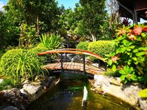 The bridge over the pond with fountain and small waterfall. The royalty free stock photo