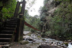 Bridge over the river. Quindío River Valle de Cocora, Salento, Colombia Stock Photography
