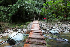 Bridge over the river. Quindío River Valle de Cocora, Salento, Colombia Royalty Free Stock Photography