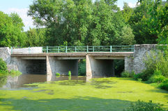 Bridge over the river. And aquatic plants Stock Images