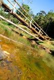 Bridge over a River in Bahia Stock Image