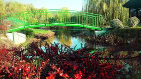 The bridge over the river. Berry bushes. Autumn nature. On a bright sunny day. Beautiful nature in the fall royalty free stock images