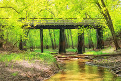 Bridge Over River in Green Woods Royalty Free Stock Photos