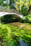 Bridge over river Kamenice in Bohemian Switzerland National Park, Czech Republic.  stock images