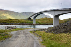 Bridge over river on Lofoten Islands Royalty Free Stock Photos